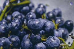 The Bunch Of Grapes Stock Photo