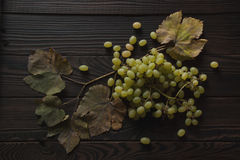 Bunch of grapes, dry leaves on the dark wooden surface Stock Image