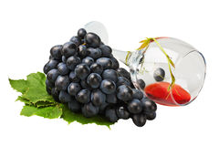 Bunch of grapes and an empty glass of wine Royalty Free Stock Photography