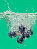 Bunch of grapes floating in water with splash Stock Photography