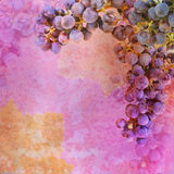 Bunch of grapes - garland Royalty Free Stock Photography