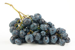 Bunch of grapes. Grapes isolated on white background stock photography