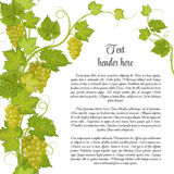 Bunch of grapes for label wine or other. Grapes pattern page in green Stock Images