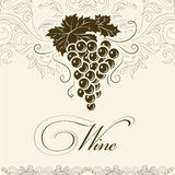 Bunch of grapes for labels of wine Stock Images