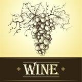Bunch of grapes for labels of wine. For bottle cask barrel ceg Stock Illustration