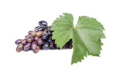 Bunch of grapes with leaf Royalty Free Stock Photography