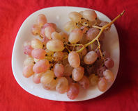 Bunch of grapes on a red plate Stock Photography
