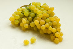 Bunch of grapes. Resting on a light background Stock Images