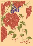 Grapes fruit vector graphic based on japan engraving. Bunch of grapes with rusty leaves, vector format based on engraving of Kawarazaki Shodo Japanese Woodblock stock illustration