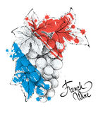 Bunch of grapes - the symbol of France. Royalty Free Stock Photo