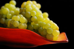 Bunch of grapes on tray Royalty Free Stock Images