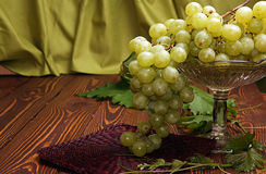 Bunch of grapes in vase for fruits Royalty Free Stock Photo