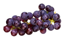 Bunch of grapes with water drops,  isolated on white with Clipping Path Stock Photography