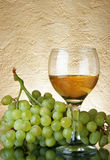 Bunch of grapes and white wine Stock Photography