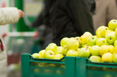 Bunch of green apples on boxes in supermarket Stock Images