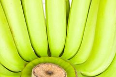 Bunch of green  bananas Stock Images