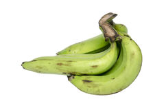 Bunch of green bananas Royalty Free Stock Images