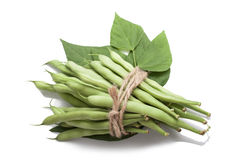 Bunch of green beans tied with rope Royalty Free Stock Images