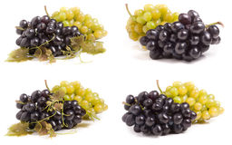 Bunch of green and blue grape isolated on white background. Set or collection royalty free stock photos