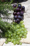 Bunch of green and blue grapes Royalty Free Stock Photography