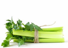Bunch of green celery Stock Photography