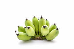 Bunch of  Green Fresh bananas. Royalty Free Stock Images