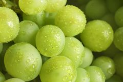 Bunch of green fresh ripe juicy grapes. As background, closeup stock image