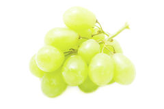 A bunch of green grape Stock Photography