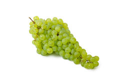 Bunch of green grapes. Isolated on white background Stock Images
