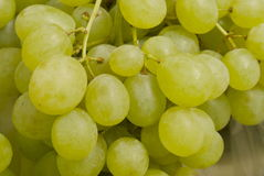 Bunch of green grapes. Green eating grapes in a bunch on an open market fruit stall Stock Photos