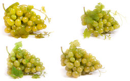 Bunch of green grapes isolated on white background. Set or collection royalty free stock images