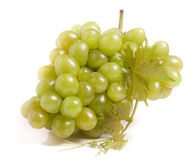 Bunch of green grapes with leaf isolated on white background Stock Photo