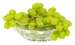 Bunch of green grapes Royalty Free Stock Photography