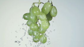 Bunch of green grapes in a spray of water stock video footage