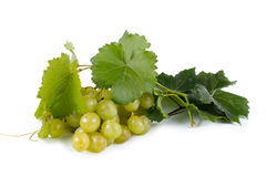 Bunch of green grapes with vine leaves Stock Photography