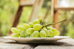 Bunch of green grapes on white plate Royalty Free Stock Image