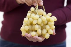 Bunch of green grapes in woman's hands Stock Image