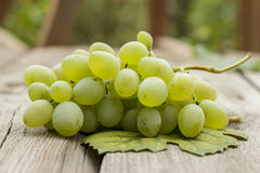 Bunch of green grapes on wooden table Stock Image
