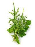 Bunch of green herbs Stock Photo