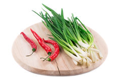 Bunch of green onion Royalty Free Stock Image