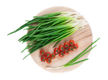 Bunch of green onion Stock Image