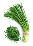 Bunch of green onions Stock Image