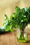 Bunch of green parsley in a transparent glass Royalty Free Stock Photography