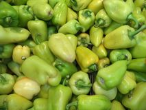 A bunch of green pepper varieties of swallow royalty free stock photo