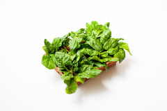 Bunch of green raw spinach leaves on white background. Brown basket with  green raw spinach leaves on white background Stock Photo