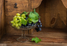 Bunch of green and red grapes in vase for fruits Stock Image