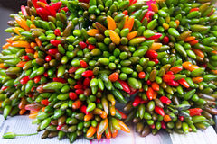 Bunch of green and red peppers chili Stock Photography