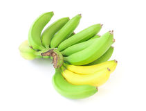 Bunch of green and yellow banana on white background. Bunch of green and yellow banana Stock Photography