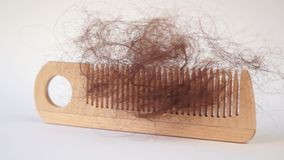 Bunch of hair on the comb. Hair loss concept stock video