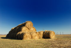Bunch of hay Stock Photography